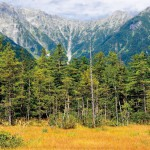 上高地田代湿原、穂高連峰を望む